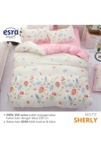 KL 1019-035 Sherly